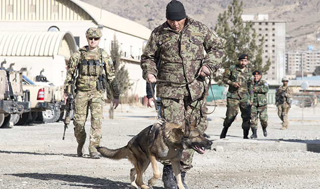 Military working dog handlers key to security