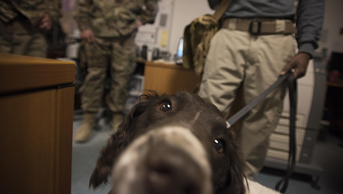 IED survivor brings cheer to deployed service members