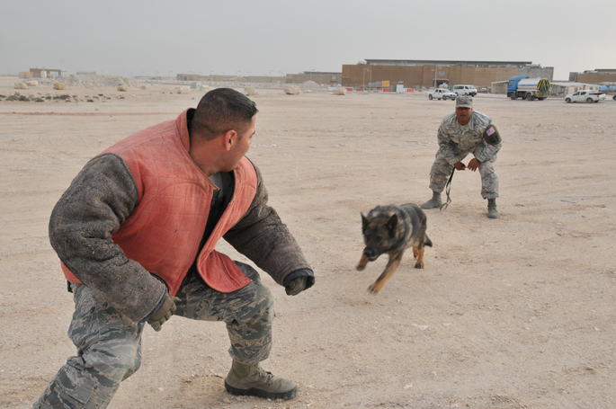 MWD: A bond protecting thousands